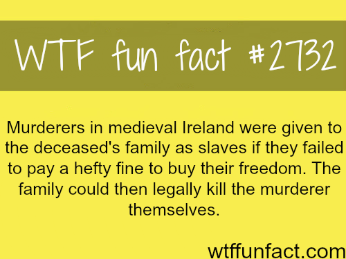 Ireland during the medieval times-WTF funfacts