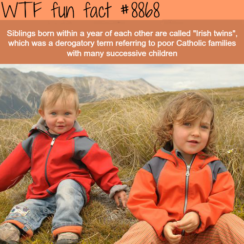 Irish Twins - WTF fun facts