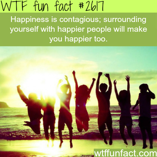 Is happiness contagious? - WTF fun facts