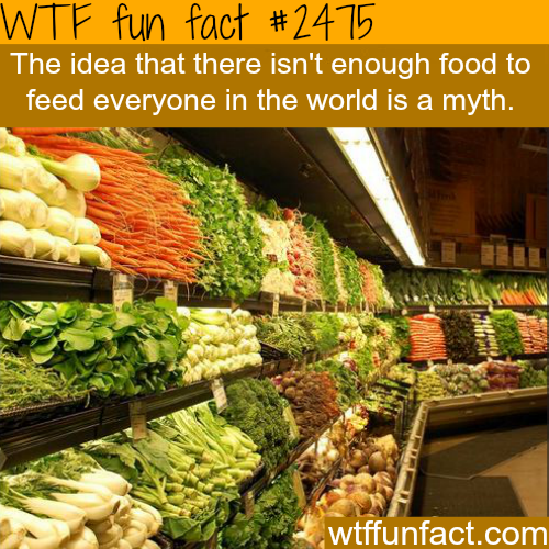 Is there enough food to feed everyone? -WTF funfacts