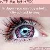 japan s hello kitty contact lenses