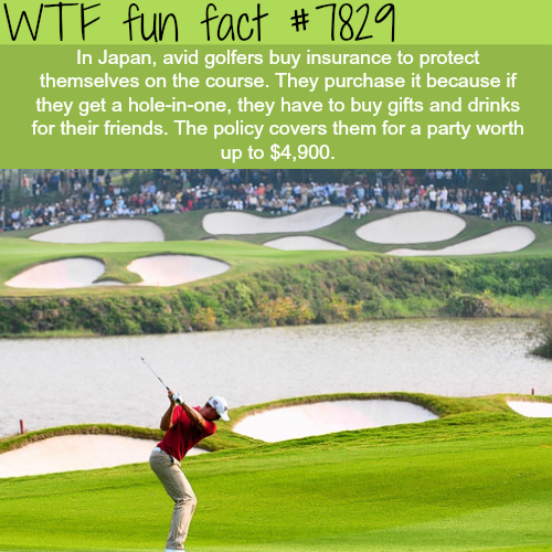 Japan weird hole-in-one tradition - WTF fun facts