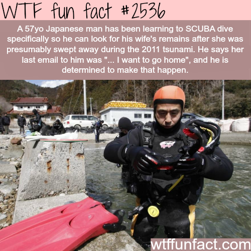 Japanese man learns SKUBA to find his dead wife - WTF fun facts