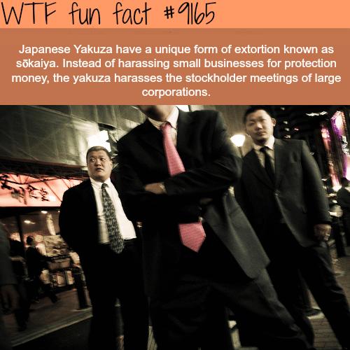 Japanese Yakuza - WTF Fun Facts
