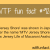 jersey shore aired in japan wtf fun facts