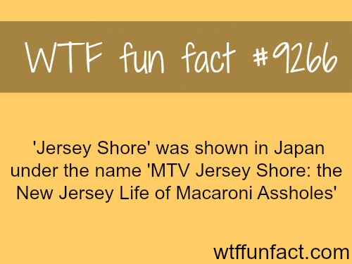 Jersey Shore Aired in Japan - WTF fun facts