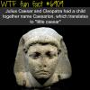 julius caesar wtf fun fact