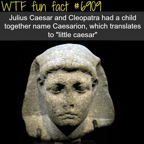 Julius Caesar - WTF fun fact