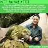 kakapo wtf fun facts