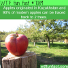 kazakhstan facts wtf fun facts