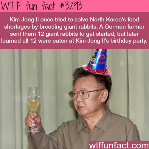 Kim Jong Il's birthday -WTF fun facts