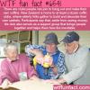 kiwi coffin club wtf fun facts