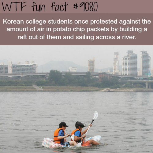 Korean College students make a raft out of chips bags - WTF fun fact