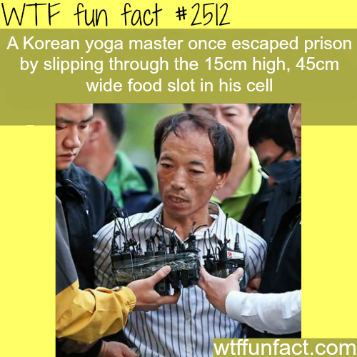 Korean Yoga Master Escapes Prison - WTF fun facts