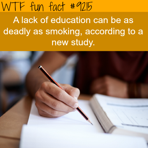 Lack of Education - WTF Fun Fact