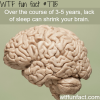 lack of sleep wtf fun facts
