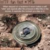 landmines wtf fun fact
