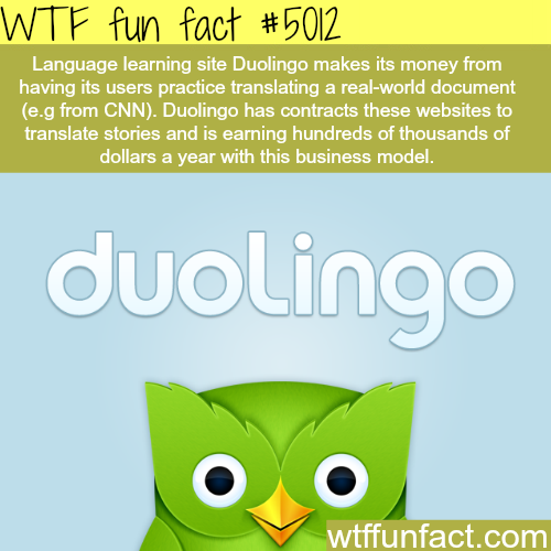 Language learning website - WTF fun facts