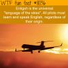 language of the skies wtf fun fact