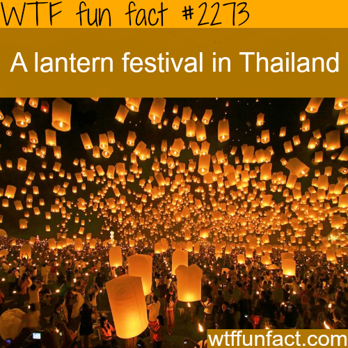 Lantern festival in Thailand -WTF fun facts