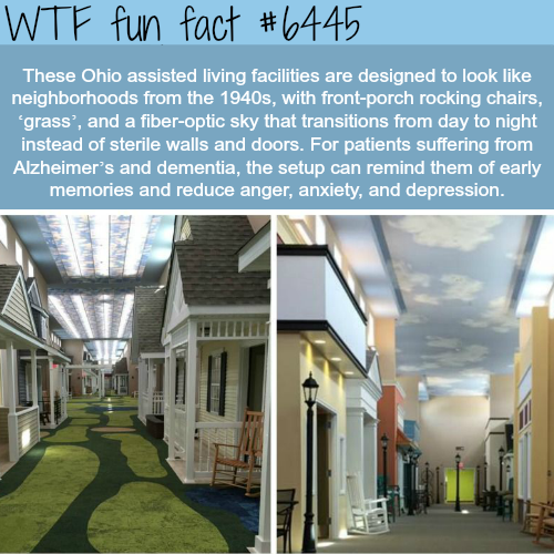 Lantern Of Chagrin Valley  - WTF fun facts