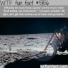 last words on the moon wtf fun facts