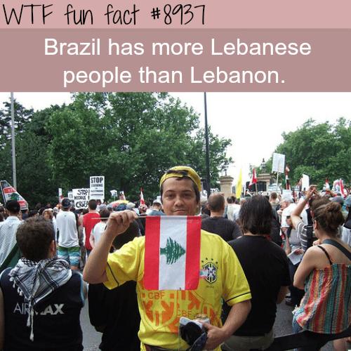 Lebanese people in Brazil - WTF fun fact