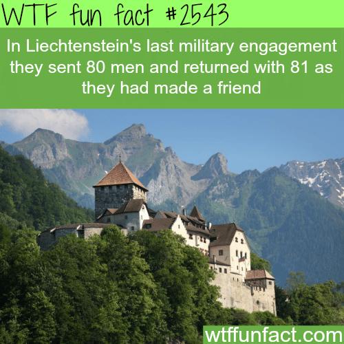 Liechtenstein army -WTF funfacts