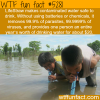 lifestraw wtf fun facts
