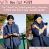 like a hug jacket wtf fun facts our facebook