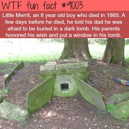 Little Merrit's Tomb