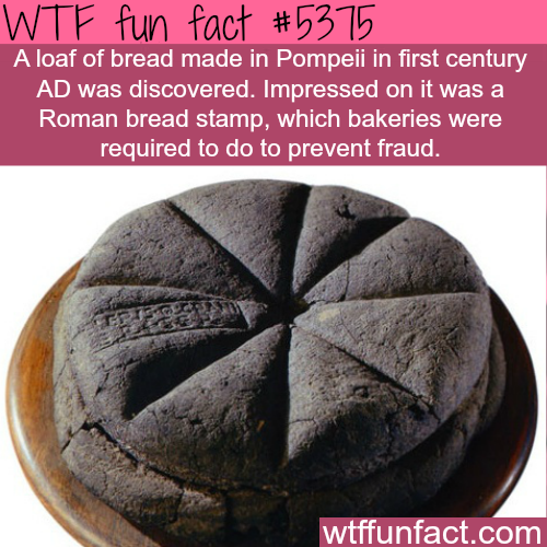 Loaf of bread from the first century AD found in Pompeii - WTF fun facts