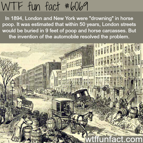 London and New York had mountains of horse poop in the streets - WTF fun facts