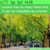 london can be classified as a forest wtf fun