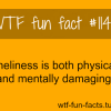 loneliness facts health damage