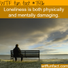 loneliness wtf fun facts