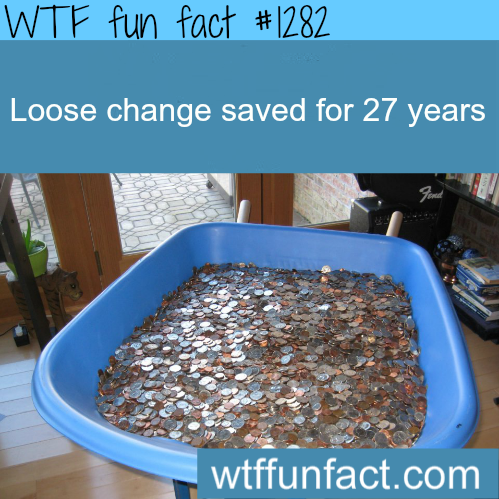 loose change saved for 27 years.