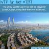lusail qatar wtf fun facts
