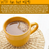 making a better tasting hot chocolate wtf fun