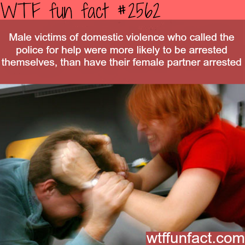 Male victims of domestic violence - WTF fun facts