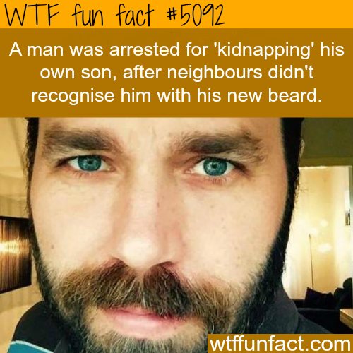 """Man arrested for """"kidnapping"""" his own son - WTF fun facts"""