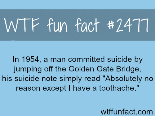 Man commit suicide. the reason? - WTF fun facts