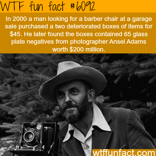 Man finds a box that is worth $200 million  WTF fun facts