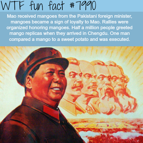 Mao and his relationship with Mangoes - WTF fun fact