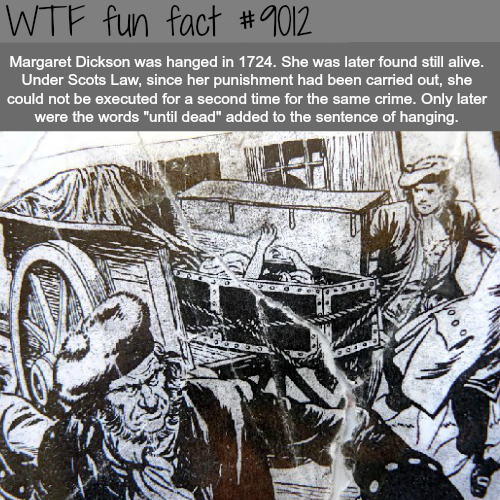 Margaret Dickson - WTF fun facts