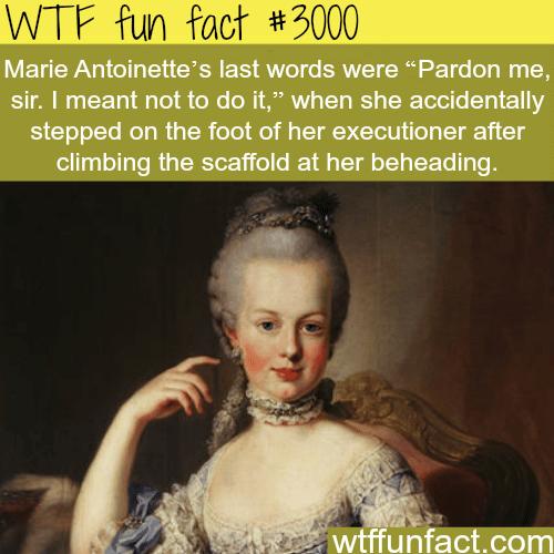 Marie Antoinette's last words -WTF fun facts