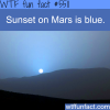 mars has a blue sunset wtf fun facts