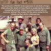 mash wtf fun fact