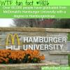 mcdonalds hamburger university wtf fun facts