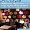 mcrefugees in hong kong wtf fun facts